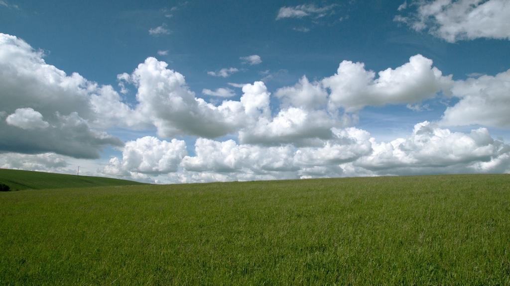 в собственность земельный участок после наследства